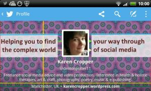 Screenshot of new twitter profile in landscape view